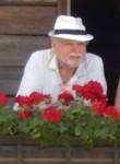 Mentl, 70  , Innsbruck