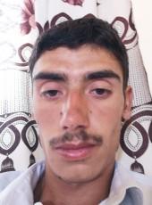 Mustafa , 24, Turkey, Van