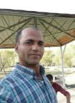 Seydi, 38  , Erzincan