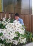 Alena, 51  , Chernyakhovsk