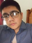 Alfalfa, 18  , Houston