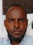ابراهيم يحى ادم, 35  , Khartoum