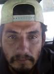 Luis, 33  , Culiacan