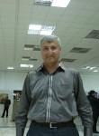 zubic, 56  , Tashkent