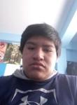 Luis Ricaldi, 18  , La Paz