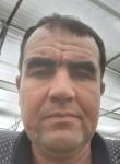 Nurik, 42  , Romiton