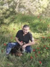 David, 46, Israel, Beersheba