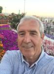 ahmet, 61  , Aleppo