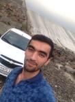 pasha, 27, Samarqand