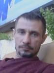 Spasatel))), 41  , Lesnoj Gorodok