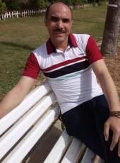 elsayed, 46, Egypt, Alexandria