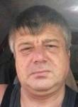 Володимир, 49  , Delyatyn