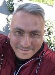 Mesut , 45, Istanbul