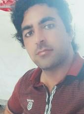 Habib, 30, United Arab Emirates, Dubai