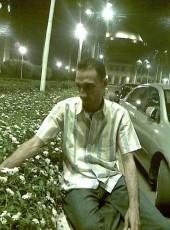 nagy sarkis, 44, Egypt, Cairo