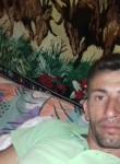 catalon, 39  , Timisoara