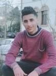 Raef, 23  , Gouda