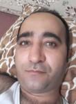 مسعود, 37, Tehran