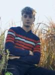 Feniks, 20  , Minsk