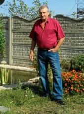 vasya, 66, Russia, Krasnodar