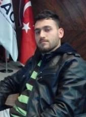 Mustafa, 31, Turkey, Adana