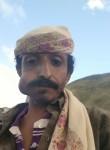 صآدق محمد مرعي ع, 42  , Ibb