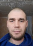 momotov3d936