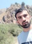 Shoxrux, 23  , Tashkent