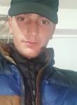 NAREK, 20  , Armavir