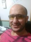 César, 41  , Formiga
