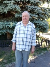 nikolay, 67, Russia, Korkino