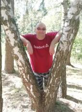 Aleksey , 42, Russia, Korolev