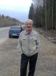 Vitaliy, 67  , Dobryanka