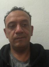 Haitham, 44, Germany, Mannheim