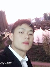 梧桐树, 28, China, Qujing