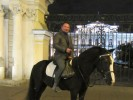 Dmitriy, 36 - Just Me Photography 7