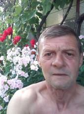 Vaivoda , 18, Romania, Reghin-Sat