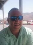Mosss, 42  , Aranda de Duero
