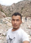 Ileos, 25  , Dushanbe