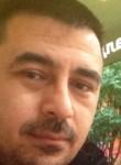 bagira, 40  , Tomilino