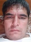 Vokhidbek, 34  , Tashkent