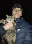 Elbrus, 37  , Vladikavkaz