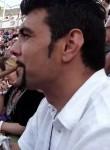 fran, 39 лет, Palma de Mallorca