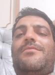 ایرانی, 32  , Ancaster