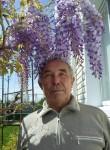 Nikolay, 66  , Pyatigorsk
