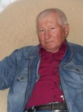 Viktor, 66, Russia, Valuyki