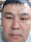 Meder, 40  , Seoul