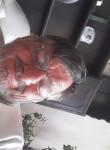 Keith, 66  , Bristol