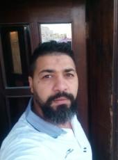 D Zine, 36, Qatar, Doha