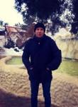 Aleksey, 27, Volgograd